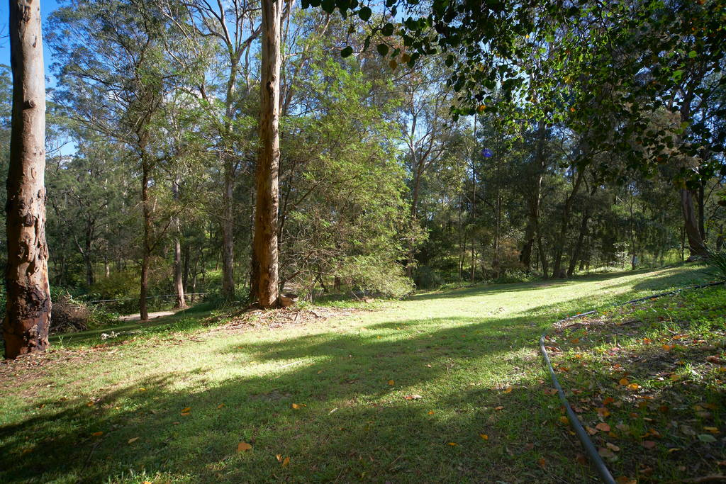 A sloped grassy bush block of land surrounded by bush typical of high bush-fire risk suburbs